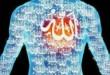Salah Faham terhadap Dunia Sufi (2)