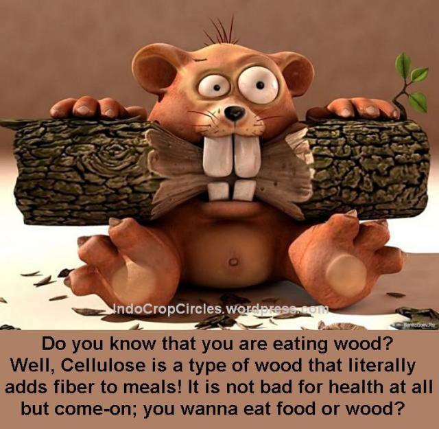 Food or Wood