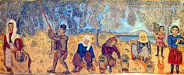 Panen buah Zaitun pada masa lalu. (pict: Theophilos)