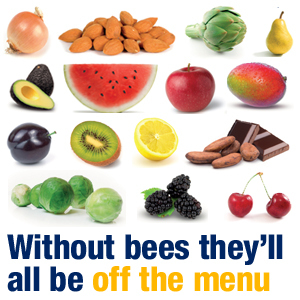 Without Bees They will all be off the menu