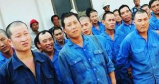 Buruh Cina di Cilacap, Jawa Tengah